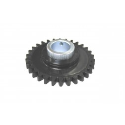 SPUR GEAR W/25MM COLLAR
