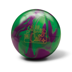 Alley Cat Purple / Green DV8